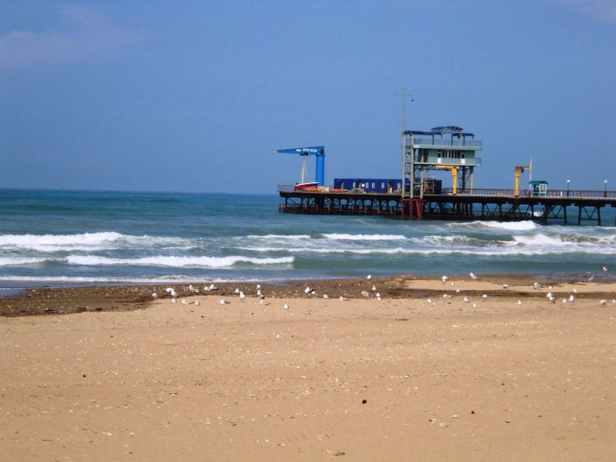 Вдц орленок фото пляжа