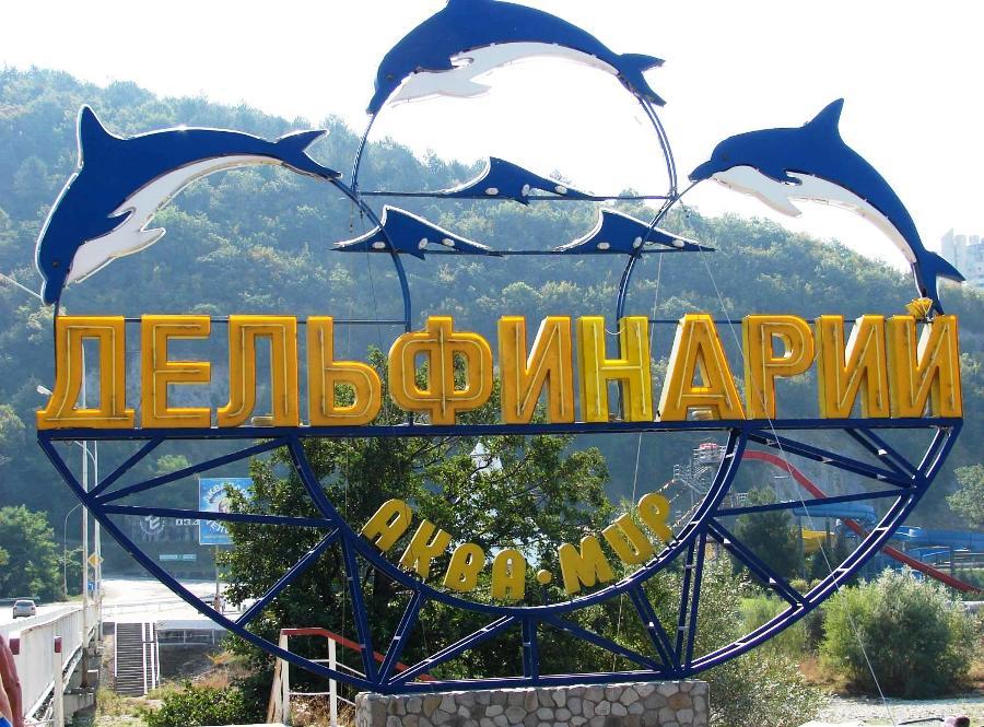 Дельфинарий «Аква-Мир» п. Небуг